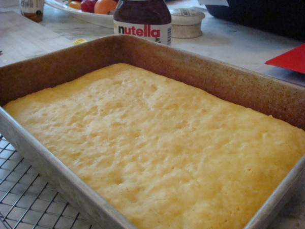 Coconut Yogurt Cake unfrosted - Beyond the Pasta