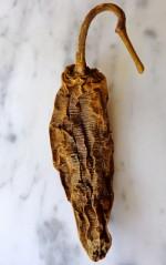 DaVinci-Chianti-Fajitas-Chipotle