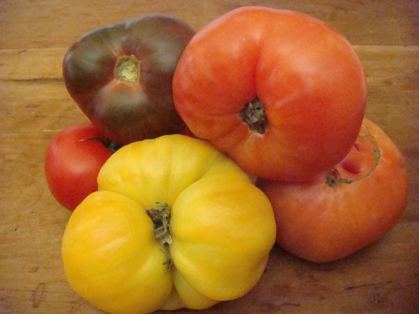 Heirloom Tomatoes - Beyond the Pasta - Mark Leslie
